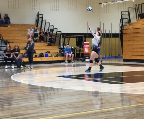 Lacey Zadra '17 in position to serve.