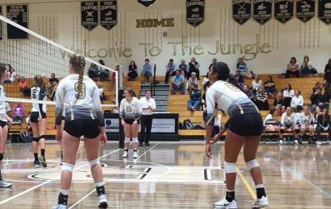 Varsity Volleyball Battles the Warriors