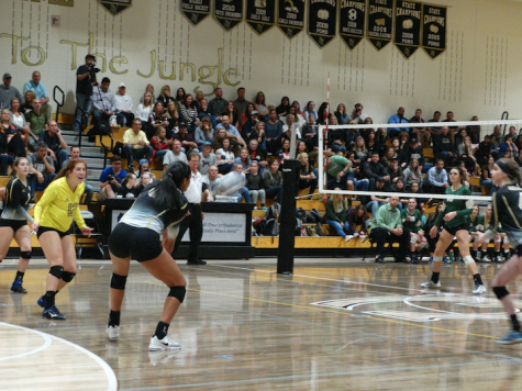Volleyball Secures the Continental League Championship