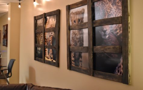 The teacher's lounge, renovated in December 2016, features jaguar themed photography and art.