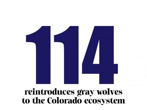 Proposition 114 reintroduces gray wolves to the CO ecosystem.