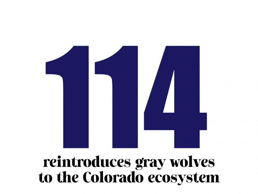Proposition+114+reintroduces+gray+wolves+to+the+CO+ecosystem.