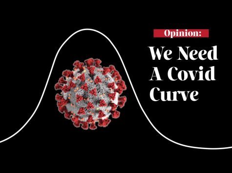 "The featured image for the ""We Need A Covid Curve"" editorial."